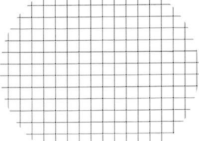 Orthogonal mesh version